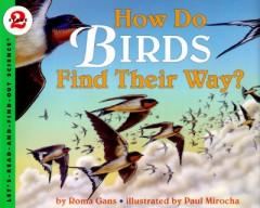 How Do Birds Find Their Way?