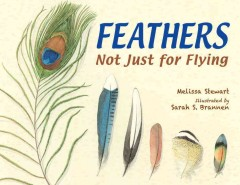 Feathers : Not Just for Flying