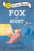Fox at Night