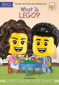 What Is Lego?