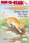 Ringo Saves the Day!: Ready-To-Read Level 1