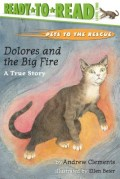 Dolores and the Big Fire: Dolores and the Big Fire (Ready-To-Read Level 1)
