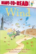 Wind: Ready-To-Read Level 1