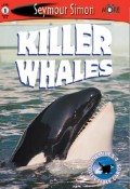 Seemore Readers: Killer Whales - Level 1